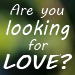 Are You Looking for Love?